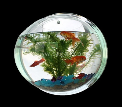 Sphere fish tank